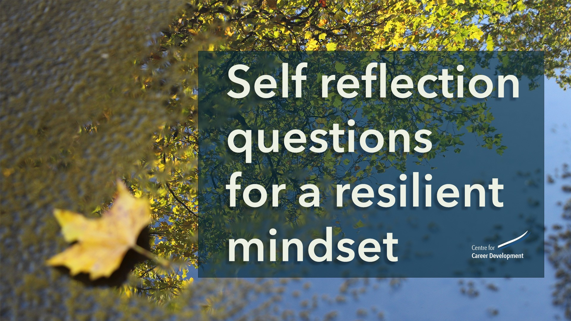Self-Reflection Questions for a Resilient Mindset - CFCD